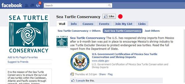 Facebook website status