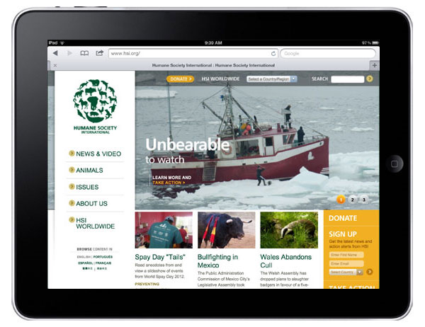 11 Nonprofit Websites That Look Great on iPads